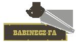 Babinecz-fa Bt.